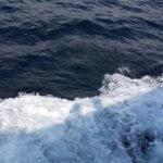 Абхазия частный сектор Гагра море