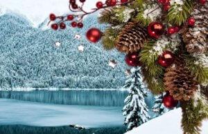 Новый год 2018 в Абхазии. До моря ноль метров! Абхазия частный сектор Гагра. Отдых эконом вариант. Жилье для отдыха с удобствами на берегу моря. Гостевой дом на пляже в центре Гагры.
