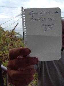 Отзывы об отдыхе в Абхазии частный сектор Гагра