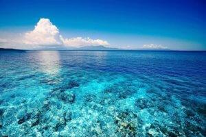 Снять жилье для отдыха в Абхазии на берегу моря в Гаграх недорого - это вполне реально!