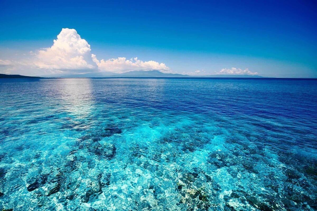 Абхазия частный сектор у моря цены 2019 Гагра отдых недорого без посредников