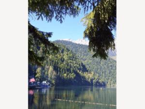 Отдых в Гаграх летом озеро Рица