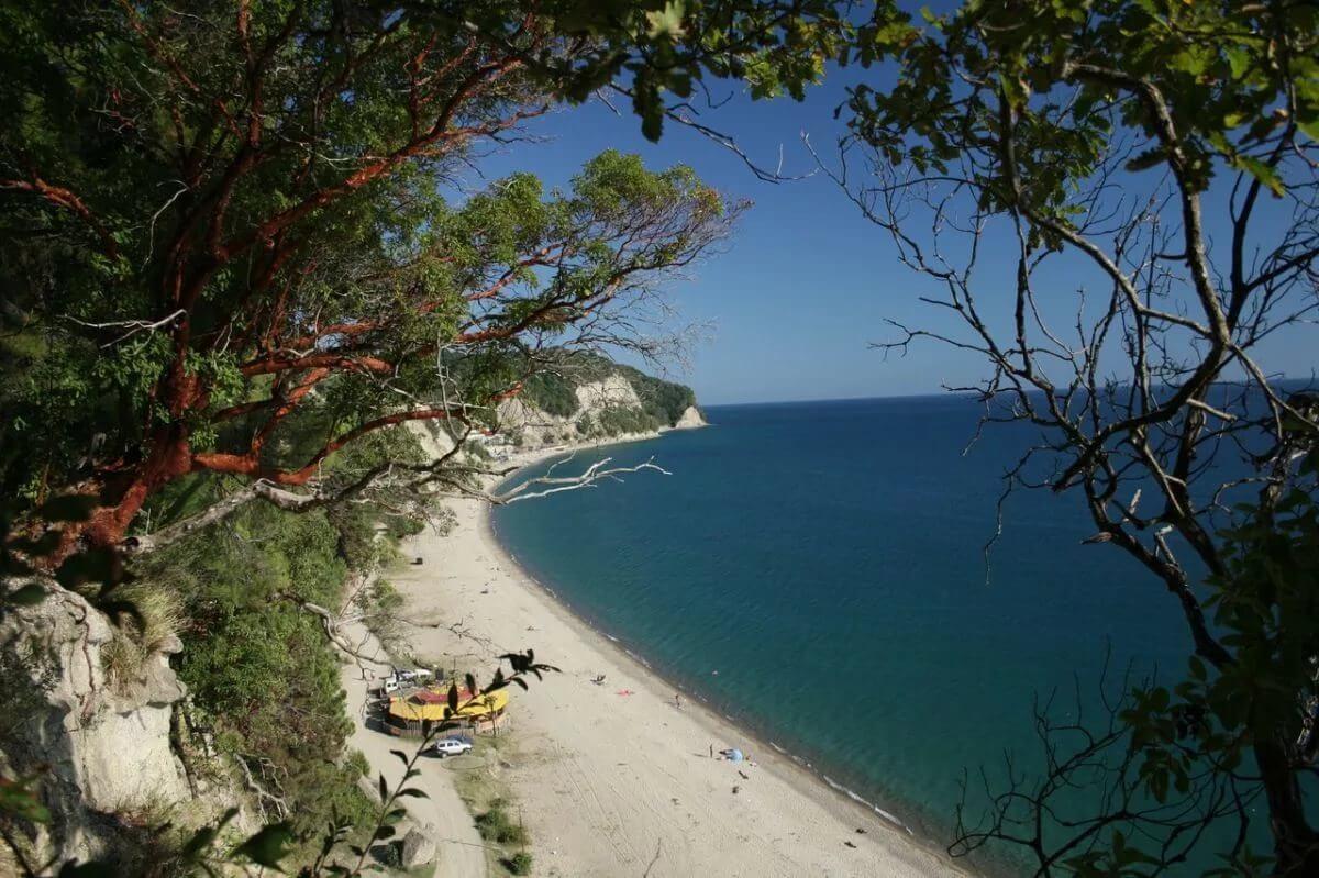 Абхазия частный сектор Поселок Лдзаа отдых на море