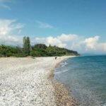 Абхазия частный сектор  Приморское Цкуара